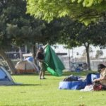 Anaheim Council-Pendeja Lucille Kring: More Dog Parks Will Solve Homeless People Problem