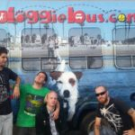 Meet Terminally Ill's Sweet New Ride: The Doggie Bus