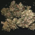 F### Cancer: Our Toke of the Week!