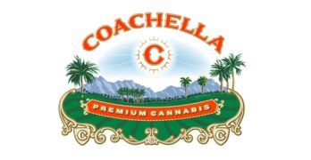 Irvine-Based Company Launches Coachella-Branded Cannabis Project
