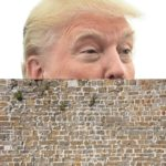 Mr. Brown, Put Up This Wall … to Protect Us from Donald Trump!