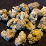 Willie Nelson OG: Our Toke of the Week!