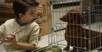 Todd Solondz Gives Dawn Wiener a New Life in Wiener-Dog