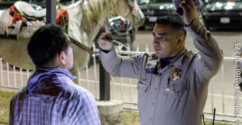 DUI? More Like RUI for Luis Alfredo Perez, Who Allegedly Rode Horse on Freeway