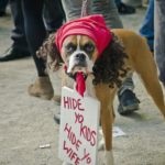 Antoine Dodson, BedIntruder.com is For Sale! Why Don't You Own It?