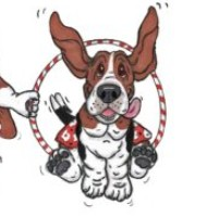 Basset Hound Rescue of Southern California Presents the 21st Annual Spring Games