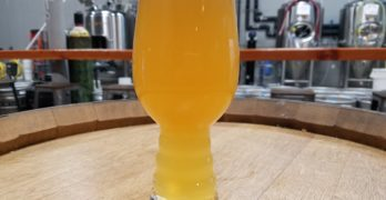 Hazy Shades at Electric Brewing Co.: What the Ale!