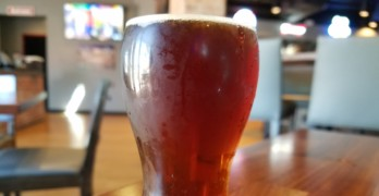 McGarvey's Scottish Ale: Our Beer of the Week!