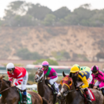 ENTER TO WIN (2) Turf Club Box Tickets to Del Mar Race Track!