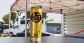 Chapman Crafted Pils, Our Beer of the Week!