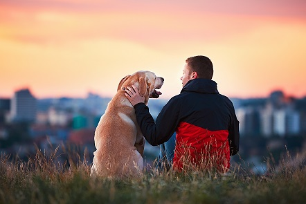 Free Pet Loss Support Group